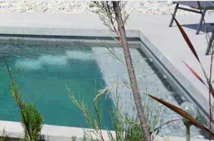 piscine et vegetations